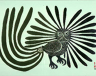 The Enchanted Owl, Kenojuak Ashevak, 1960, Stonecut